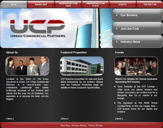 Website Design Sample 20
